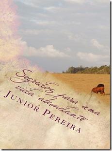 Livro Segredos para uma vida abundante, Junior Pereira