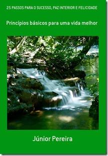 Livro: 25 Passos para o sucesso, Paz interior e Felicidade, por Júnior Pereira.
